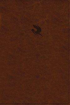 _225_350_Book.2639.cover
